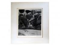 1967 ets Eenzame VogelMan x1