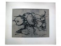 1961 Tekening inkt nr172