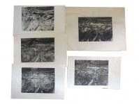 1961-ets-Landschap3-5x