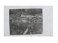 1961-etsen-5x-landschap2-nr5